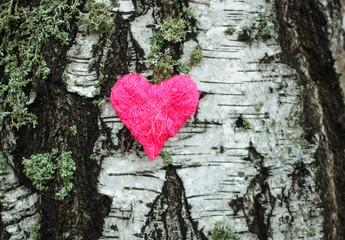 Decorative heart on birch tree bark.