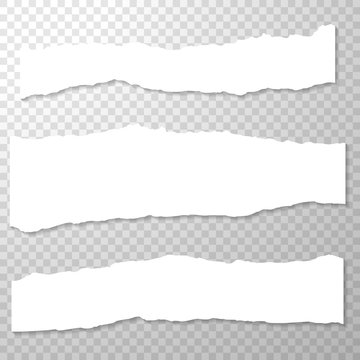 Long Horizontal Torned Off Pieces of Paper. Empty Isolated Paper Edges set on Transparent Background. White Horizontal Paper Banner. Template for Advertising. Vector Illustration