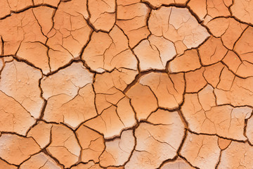 close-up dried cracked earth soil