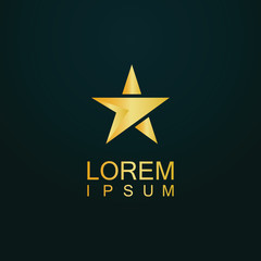 star gold arrow direction logo