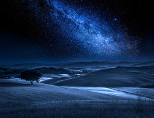 Fototapete - Tree on field in summer at night with milky way