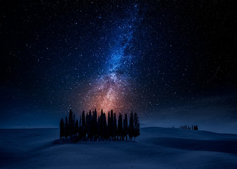 Fototapete - Cypress trees on field at night with stars, Tuscany, Italy