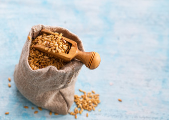 Golden flax seeds in bag and scoop closeup on light blue background with copy space