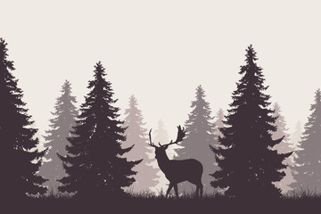 forest with silhouette of a fallow deer