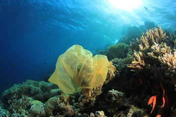 Plastic carrier bag pollution on underwater ocean coral reef