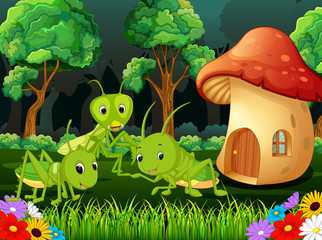 many grasshopper and a mushroom house in forest