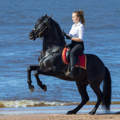 Fototapete - Horse woman and rearing Andalusian horse on beach