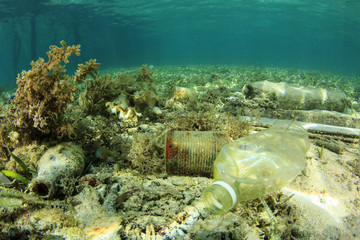 Plastic pollution in ocean environmental problem