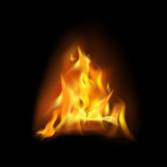 Realistic flame, fire on black background - vector