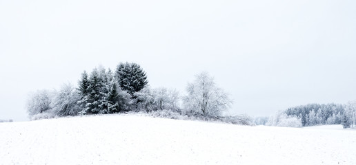 Winter landscape with snow and frost