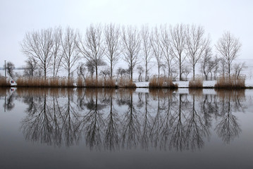 Trees are reflected in the water of a lake near the village of Etyek