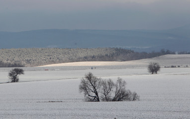 Snow covered field is seen near Budapest