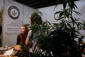 Cannabis-based products vendors wait for customers at the 1st International Cannabis Expo, in Athens