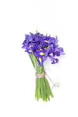 the Violet Irises xiphium (Bulbous iris, sibirica) on white background with space for text. Top view, flat lay. Holiday greeting card for Valentine's Day, Woman's Day, Mother's Day, Easter!