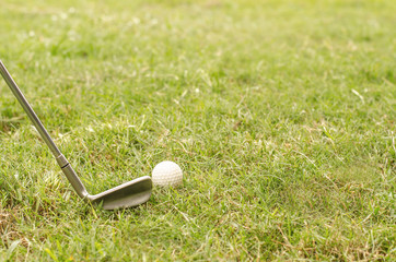 chipping a golf ball onto the green with golf club  with copy space