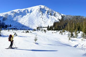 Alpine touring skier in winter mountain