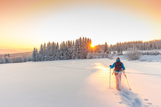 Sunny winter landscape with man on snowshoes.