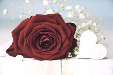 Rote Rose mit Herz - Valentinstag Karte - Hintergrund
