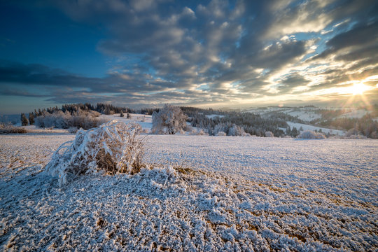 Fresh frozen snow in Białka Tatrzańska