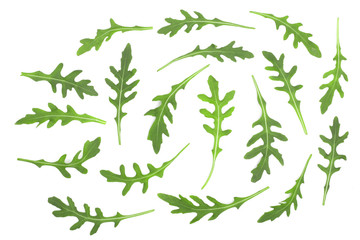Green fresh rucola or arugula leaf isolated on white background. Top view. Flat lay pattern