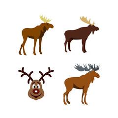 Deer icon set, flat style