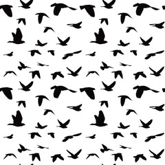 Flock of doves seamless pattern