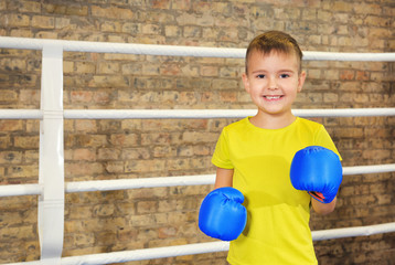 Adorable little boy in boxing gloves on ring
