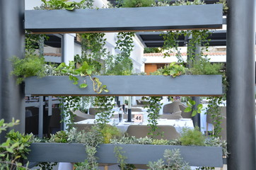 Plants in pots - wall decoration.