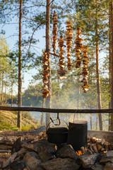 mushroom picker camp