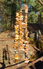 drying of edible mushrooms