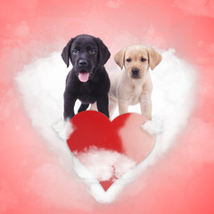 labrador retriever puppies standing on a heart shaped cloud