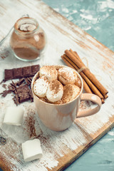 Hot chocolate with marshmallows, cinnamon and anise. Selective focus.