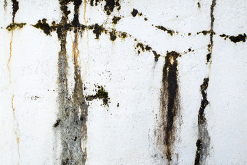White wall with dampness