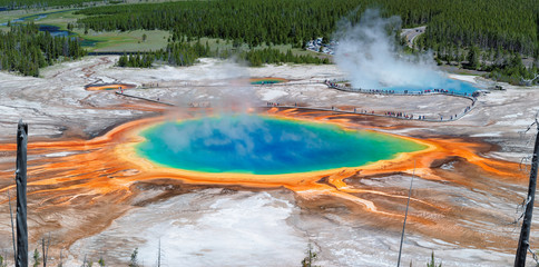 Aluminium Prints Natural Park Panorama of Grand Prismatic Spring in Yellowstone national park, Wyoming.