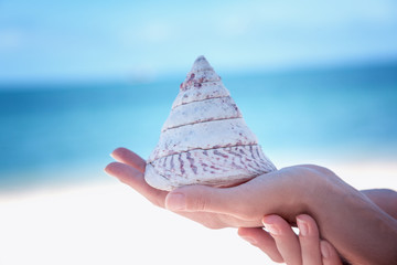 A large beautiful sea shell on a female hand against the blue sea. Beauty and health concept