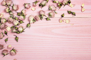 Border of rose flowers on the pink wooden background with copy space. Flowers composition.