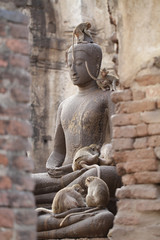 Monkey family sitting playing on ancient damaged Buddha statue, Candid animal wildlife, group of mammal on historical travel destination in Asia, home decoration wallpaper