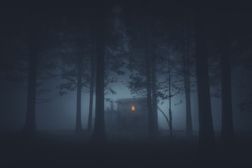 scary house in mysterious horror forest at night Wall mural