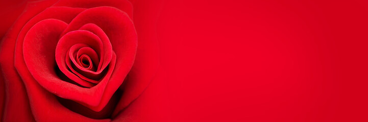 Photo sur Aluminium Roses Red rose in the shape of a heart, valentines day panoramic web banner, love symbol