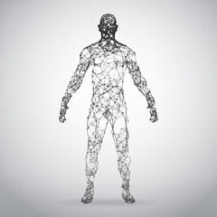 Abstract Wire frame human body. Polygonal 3d model on white background