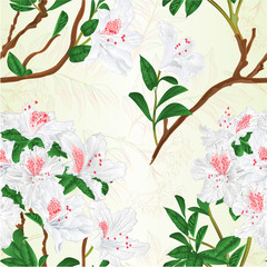 Seamless texture white rhododendron branch mountain shrub and rowan berry vintage vector illustration editable hand draw