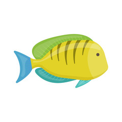 Tropical fish on white background, cartoon illustration. Vector