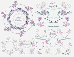 Colorful Floral Design Elements, Dividers, Frames