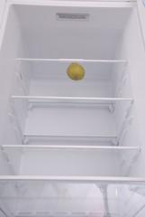 One pear in open empty refrigerator.