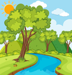 Forest scene with trees and river