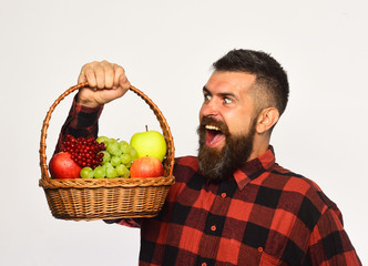 Farmer with evil smile presents apples, grapes and cranberries.
