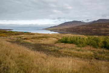 Iceland 239