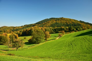 Landschaft zwischen Ursenbach und Oberflockenbach im Odenwald