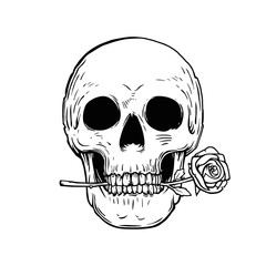 Skull with rose tattoo design