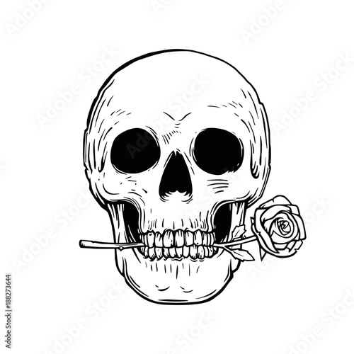 Skull With Rose Tattoo Design Stock Image And Royalty Free Vector